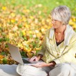 Senior Woman Using Laptop While Sitting In Park — Stock Photo