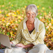 Woman Using Laptop While Sitting In Park — Stock Photo