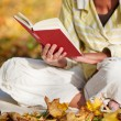 Reading Book In Park — Stock Photo #26923063