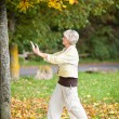 Senior Woman With Arms Raised Doing Yoga In Park — Stock Photo #26923403