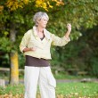 Stock Photo: Senior WomPerforming Tai Chi