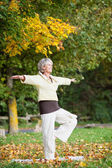 Woman Standing On One Leg While Doing Yoga In Park — Stock Photo