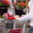 Woman Pushing Shopping Cart In Supermarket — Stock Photo #26943045