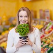 Woman holding a potted basil plant — Stock Photo