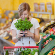 Woman With Shopping Cart Smelling Basil Plant In Grocery Store — Stock Photo #26946729