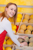 Female Worker Arranging Honeydew In Box At Grocery Store — Stock Photo