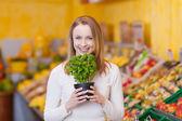 Mujer sosteniendo una planta en maceta de albahaca — Foto de Stock