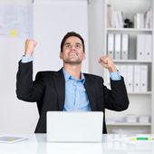 Successful businessman rejoicing — Stock Photo