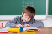 Young schoolboy writing in his exercise book — Stock Photo