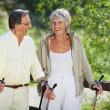 Senior Woman Trekking With Husband In Forest — Stock Photo #27074215