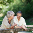 Senior Couple Leaning On Railing At Park — Stock Photo