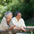 Old couple relaxing while standing on the bridge — Foto Stock