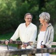 Stock Photo: Senior couple doing Nordic walk on bridge