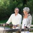 Senior couple doing a Nordic walk on bridge — Stock Photo