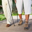 Stock Photo: Couple Walking On Boardwalk While Hiking
