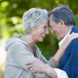 Happy Senior Couple With Head To Head Smiling In Park — Stock Photo