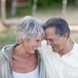 Senior Couple With Head To Head Smiling In Park — Stock Photo #27075557