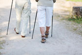 Couple traveling with nordic walking sticks — Stock Photo