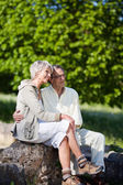In love couple — Stock Photo