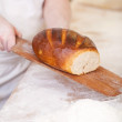 Loaf of freshly baked crusty bread — Stock Photo