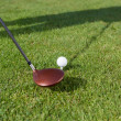 Golf Club And Ball On Grassy Field — Stock Photo
