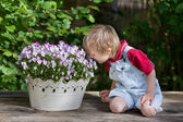 Little boy smelling the flowers — Stock Photo
