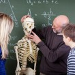 Teacher Explaining Skeleton Parts To Students In Biology Class — Stock Photo