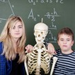 Classmates Leaning On Skeleton Against Blackboard — Stock Photo