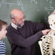 Foto Stock: Teacher during anatomy class