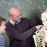 Учитель во время урока анатомии — Стоковое фото