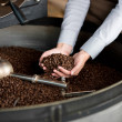 Roasted coffee beans in a woman's hand — Stock Photo #27395933