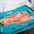 Worker With Sliced Fishes In Crate — Lizenzfreies Foto