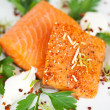 Closeup Of Cooked Salmon Slices In Plate — Stock Photo