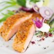 Garnished salmon fillet dish — Stock fotografie