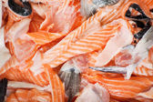 Sliced Fishes — Stock Photo