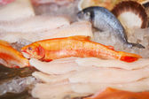 Seafood lying in cabinet — Stock Photo
