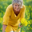 Senior Woman Plucking Flowers On Field — Stock Photo