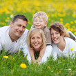 Happy family lying on flower meadow — Stock Photo