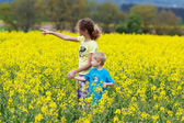 Siblings walking through yellow rape field — Stock Photo