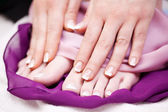 Woman with French manicured finger and toe nails — Stock Photo