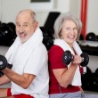 Senior Couple Lifting Dumbbells While Sitting In Gym — Stock Photo #29508099
