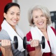 Mother And Daughter Lifting Dumbbells In Gym — Stock Photo #29508695