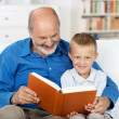 Grandfather reading to his grandson — Stock Photo #30760837