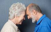 Playful loving senior couple — Stock Photo