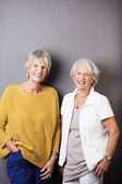 Two beautiful happy senior women — Stock Photo