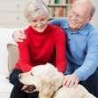 Happy golden retriever with its elderly owners — Stock Photo #39619625