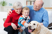 Grandparents with their grandson and pet retriever — Stock Photo