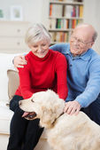 Happy golden retriever with its elderly owners — Stock Photo