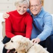 Loving elderly couple with their golden retriever — Stock Photo