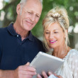 Couple reading information on tablet — Stock Photo #50971975